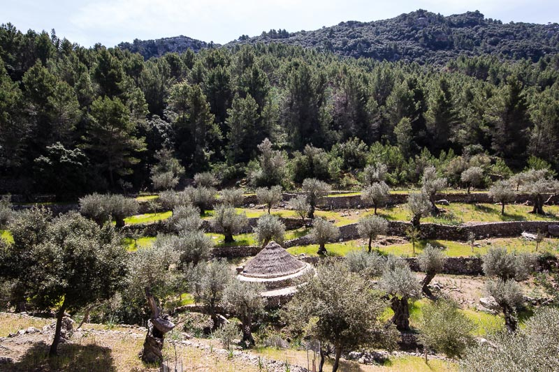 Archduke Walk, Valldemossa, Majorca
