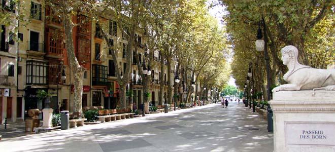 Ave Born, Palma de Mallorca