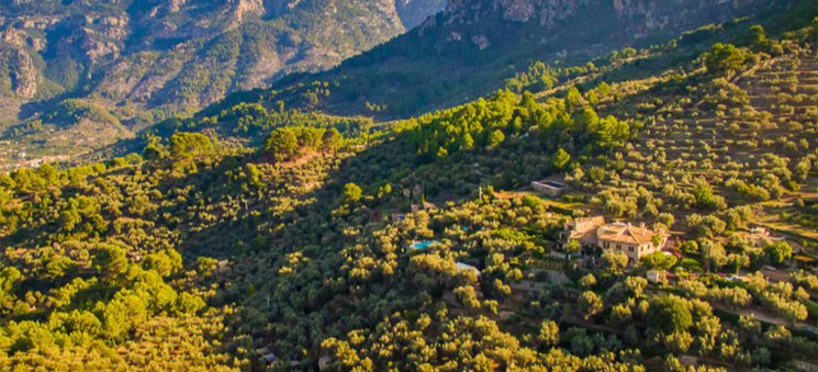 Late Summer Sun in Mallorca: Top Pick of Places to Stay for Couples